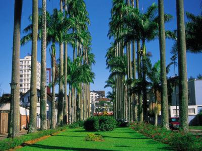 Plano de saúde Joinville