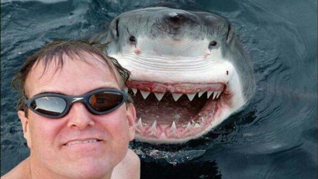 """A """"selfie"""" maluca e perigosa – quantos """"curtir"""" valem a sua vida?"""