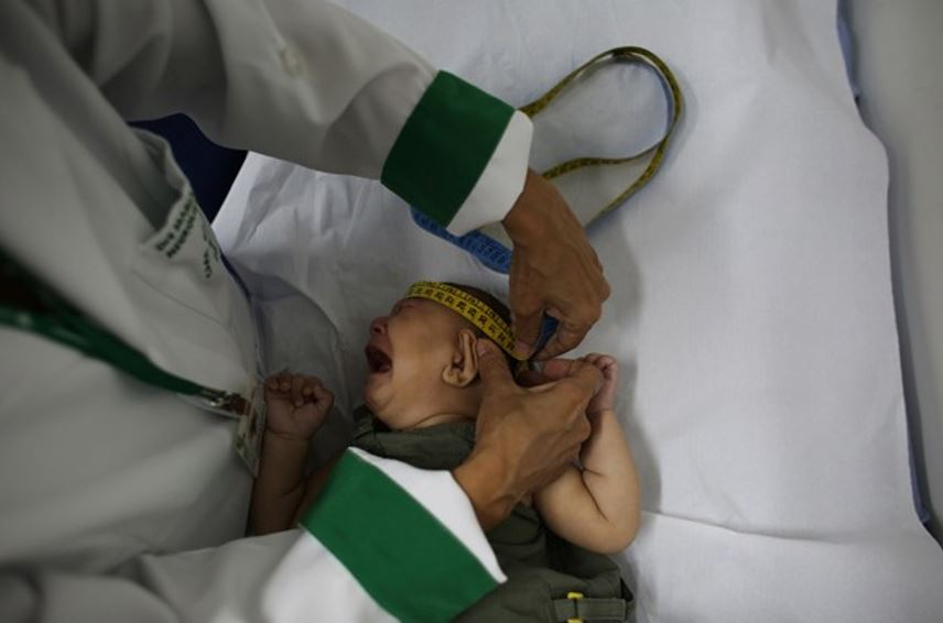 Últimos informes sobre a microcefalia no Brasil