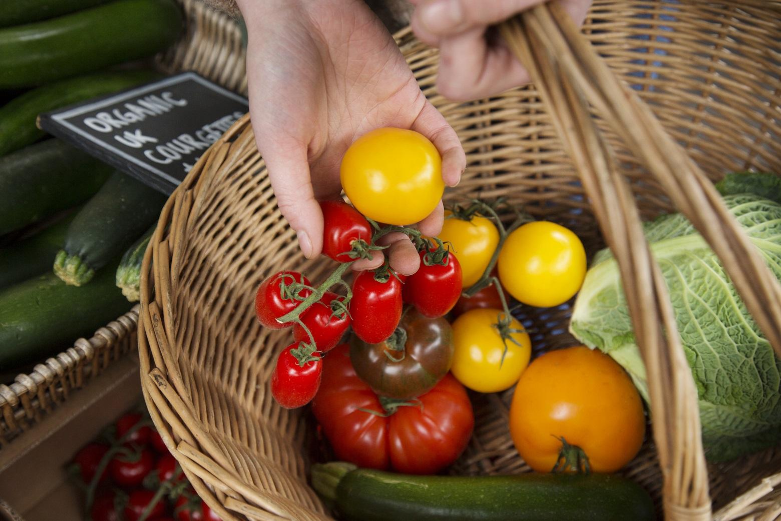 Cuidado com os alimentos que contêm pesticidas ou acrilamida!