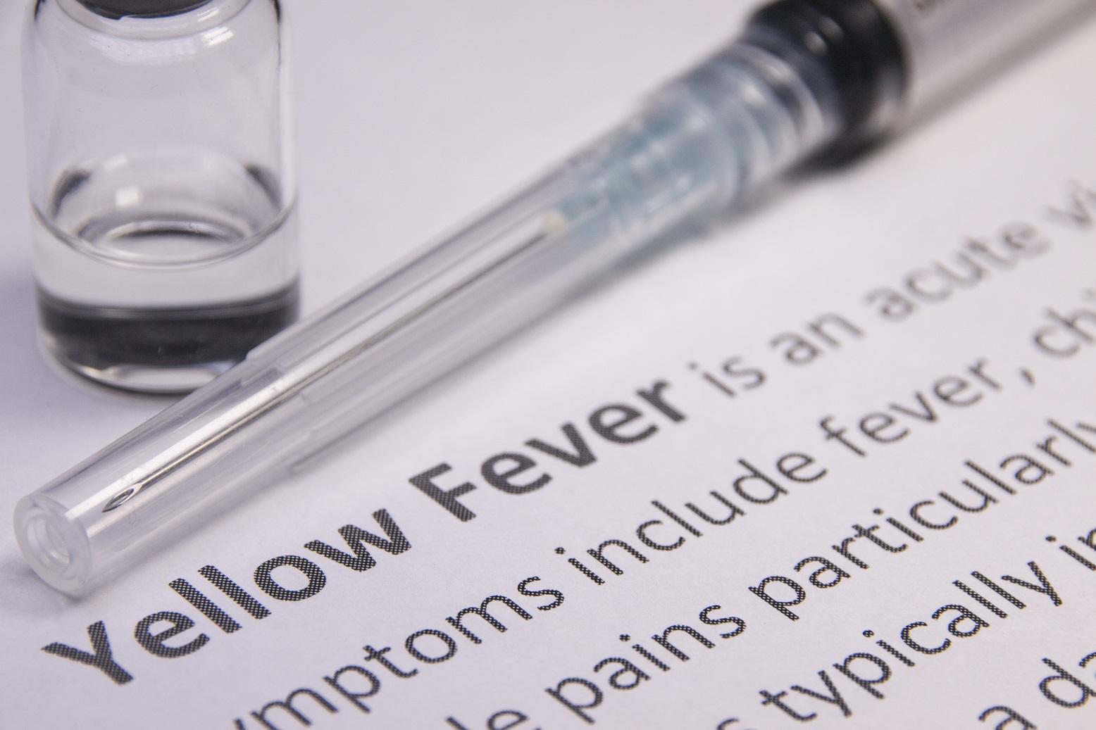 Fique atento/a aos sintomas da febre amarela