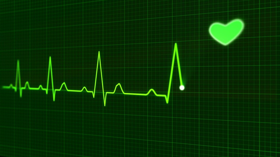 Unimed seguro saúde