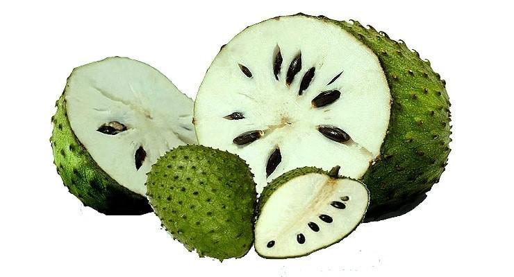 Graviola é a fruta deliciosa com poder para curar o câncer