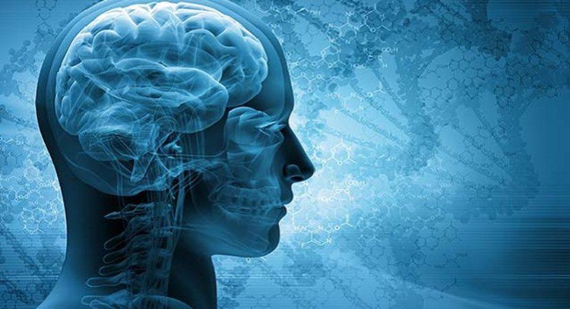 Como treinar seu cérebro para conseguir o que você realmente quer