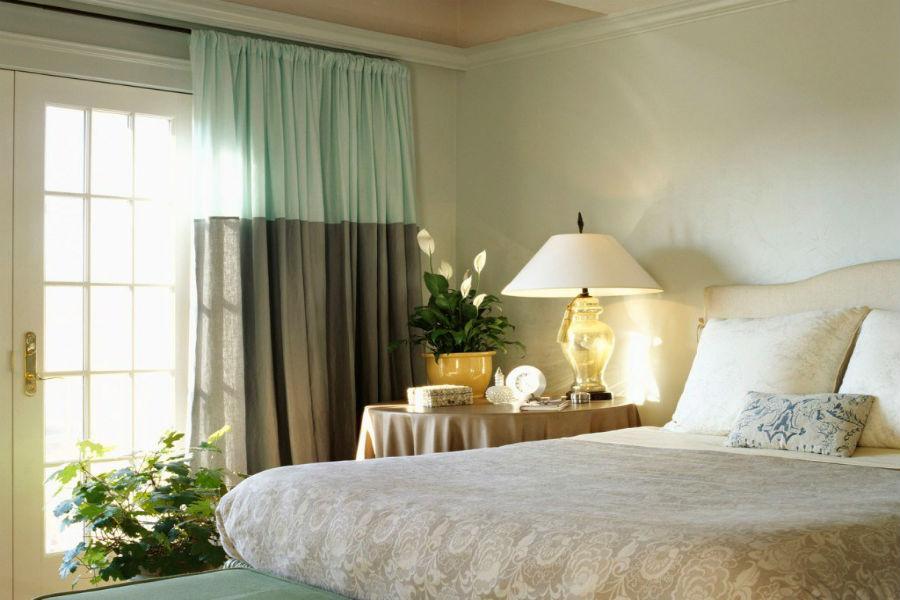Conheça 5 plantas para combater a insônia que você deve ter no seu quarto