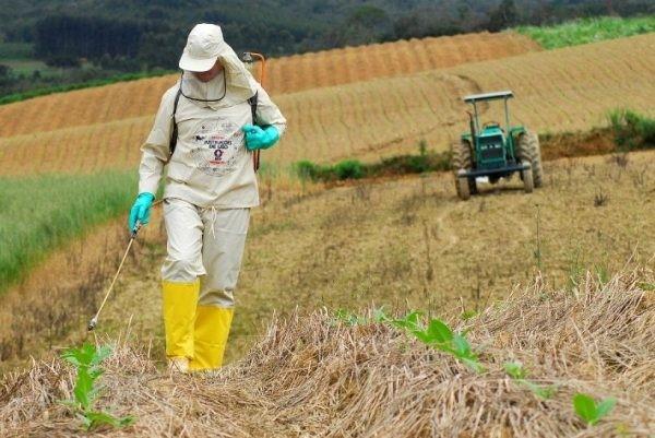 Crianças são as maiores vítimas do uso de agrotóxicos
